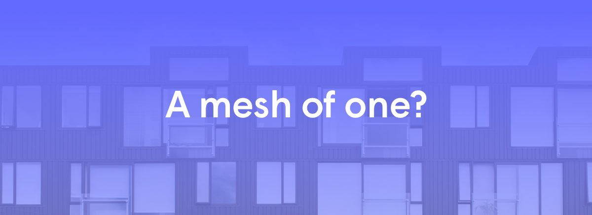Plume-Mesh-of-One-Blog-Social-Short-2-1